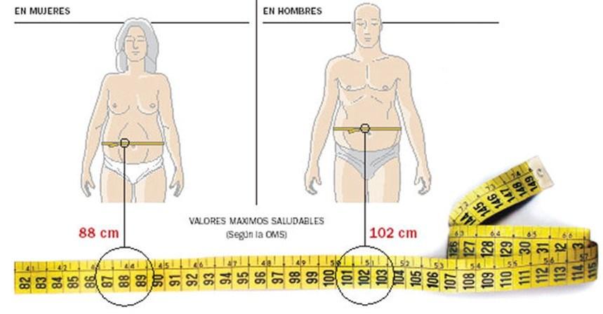 Valores máximos saludables para el perimetro de cintura